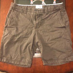 Gray Slim Fit GAP Shorts